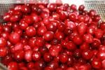 cranberry fresh