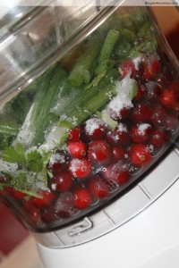 cranberry salsa food processor